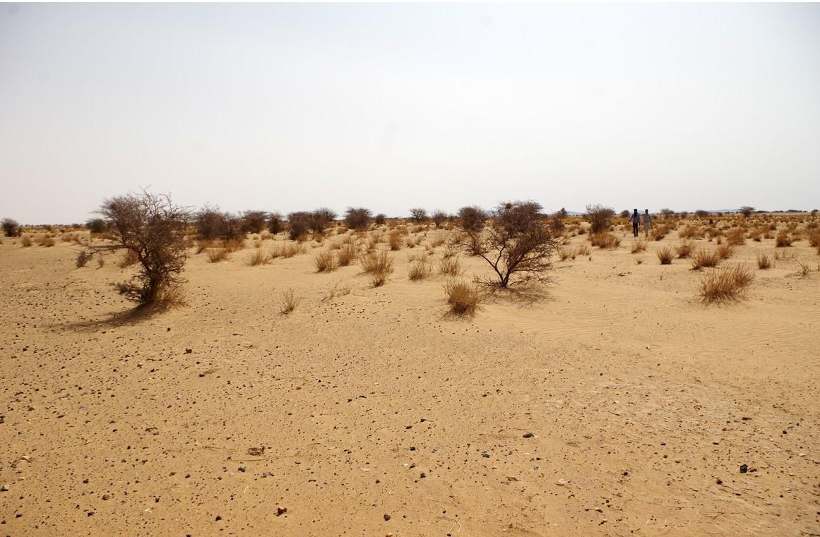 Photo_Mauritanie-2.jpg